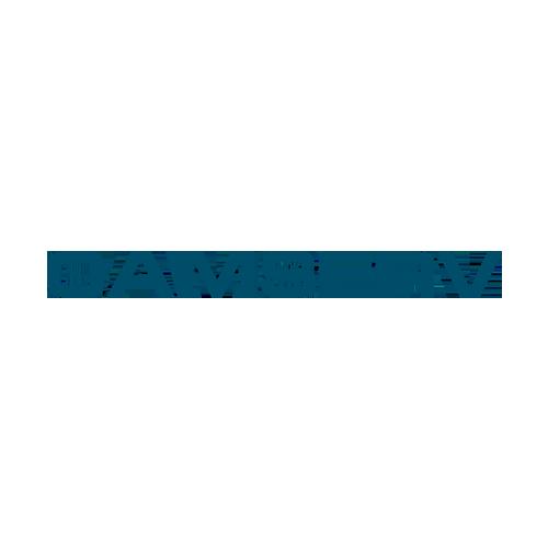 Camserv Logo